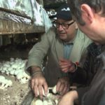 """""""Andrew Zimmern Sees Where Fungus Grows in Paris on BIZARRE FOODS"""""""