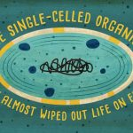 How a single-celled organism almost wiped out life on Earth - Anusuya Willis