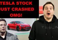 Tesla Stock Crash as Elon Musk Fires 3,000