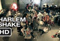 Harlem Shake (Midnight Madness Edition at Movieclips / ZEFR) Do The Harlem Shake