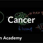 Cancer | Cells | MCAT | Khan Academy