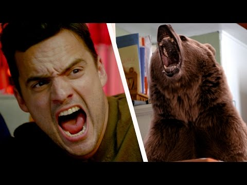 What If Bears Killed One In Five People?