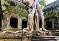 Angkor: Ancient Mega City in the Jungle